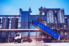 Set of storage tanks cultivated agricultural crops processing pl Royalty Free Stock Photos