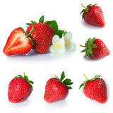 Set from strawberry berries. isolated on white Royalty Free Stock Image