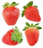 Set of strawberry fruits Royalty Free Stock Image