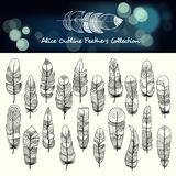 Various Editable Stroke Bohemian Feathers royalty free illustration