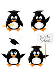 Set of student penguins Stock Photo
