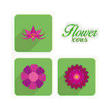 Set Of Stylish Colorful Flowers Icons Isolated Stock Images