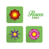 Set Of Stylish Colorful Flowers Icons Isolated Stock Photography