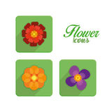 Set Of Stylish Colorful Flowers Icons Isolated Stock Photo
