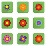 Set Of Stylish Colorful Flowers Icons Isolated Stock Image