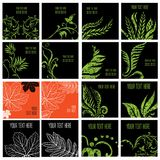 Set of stylish floral backgrounds. Design elements can be used for invitation, greeting cards Royalty Free Illustration