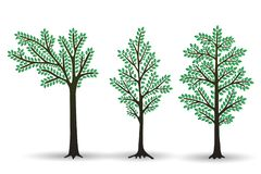 Set of Stylized abstract trees with green foliage isolated on white background. Set of Stylized abstract  trees with green foliage isolated on white background Stock Photography