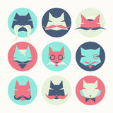 Set of stylized animal avatar bright cats Stock Image