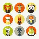 Set of stylized animal avatar Stock Photos