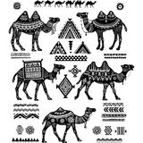 Set of stylized figures of Camels and ornament Royalty Free Stock Images