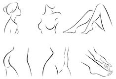 Set of stylized body parts Stock Photo