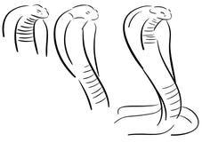 Set of Stylized cobra isolated Royalty Free Stock Photo