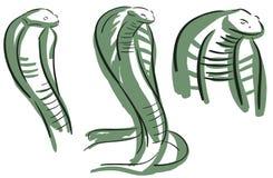 Set of Stylized cobra isolated Stock Photo