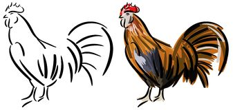 Set of stylized cock isolated Stock Photography