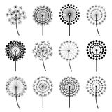 Set of stylized dandelions. Set of black dandelion fluff isolated on white background. Stylized summer or spring flowers, floral design elements, icons. Vector Royalty Free Stock Image