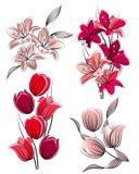 Set of stylized flowers Royalty Free Stock Photography
