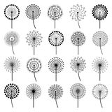Set of stylized flowers dandelions. Set of black dandelion fluff isolated on white background. Stylized creative summer or spring flowers, floral design elements Stock Image