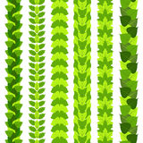 Set of stylized foliate borders made of different tree leaves, such as ginkgo, tulip tree, ash, birch, maple and poplar.  Vector i Stock Images