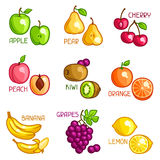Set of stylized fresh fruits on white background Stock Images