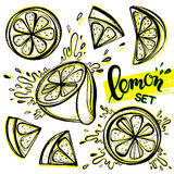 Set of stylized hand drawn lemons. And water splashes.Perfect for restaurant menu backdrop, healthy food concept, juice bar,for cards and prints.Vector Stock Photos