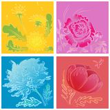 A set of stylized handdrawn flowers Royalty Free Stock Images