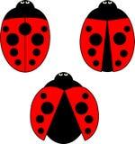 A set of stylized ladybirds Stock Photos