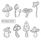 Set of stylized magic mushrooms royalty free illustration