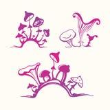 Set of stylized mushrooms Royalty Free Stock Photography