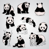 Set of stylized pandas in different positions Royalty Free Stock Photography