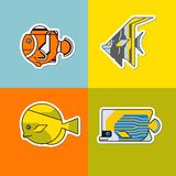 Set stylizowana ryba Obrazy Stock