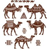 Set stylizowane postacie wielbłądy Obraz Stock