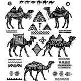Set stylizowane postacie wielbłądy i ornament Obrazy Royalty Free