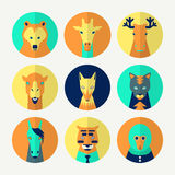 Set stylizowany zwierzęcy avatar Fotografia Royalty Free