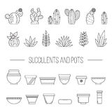 Set of succulent plants, cactuses and pots.rLinear botanical vec Royalty Free Stock Photos