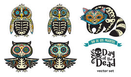 Set with sugar skull penguins, owls and raccoon Stock Images