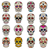 Set of Sugar skulls isolated on white background. Day of the dead. Vector illustration Stock Photography