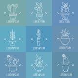 Set sukulentów kaktusy w garnkach i rośliny rLinear logów elemen ilustracji