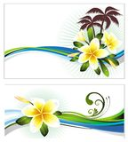 Set of summer banners with flowers Royalty Free Stock Photo