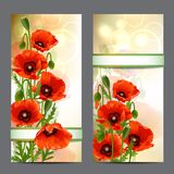 Set of summer banners with Red Poppies Royalty Free Stock Image
