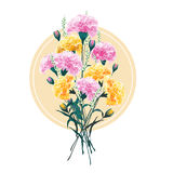 Set of Summer carnations bouqet  Floral Greeting Card with Bloom Royalty Free Stock Images