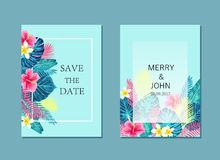 Set of summer exotic and tropic card design. Royalty Free Stock Photos