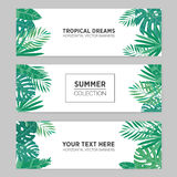 Set of summer horizontal banners with tropical leaves, monstera, banana, chamaedorea and other palms. Template for Royalty Free Stock Photography