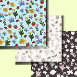 Set of summer patterns with flowers and insects. vector illustration. Hand drawing. Set of summer patterns with flowers and insects. vector illustration. Hand Royalty Free Stock Image