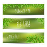 Set of summer sale banners with green leaves Royalty Free Stock Photo