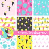 Set of summer seamless pattern with flamingo, toucan, parrot, pineapple, palm and exotic leaves. Vector Illustration vector illustration
