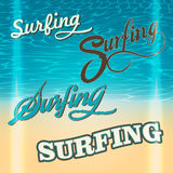 Set of summer surf typography elements Royalty Free Stock Photos
