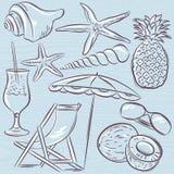 Set of  summer symbols, clams, shells, cocktail, starfish, umbre Royalty Free Stock Photo