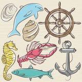 Set of  summer symbols, ship rudder,anchor, shells, lobster,dolp Stock Image