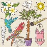 Set of  summer symbols, swim suit, parrot, Hummingbird, palm tre Stock Photos