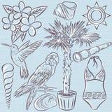 Set of  summer symbols, swim suit, parrot, Hummingbird, palm tre Stock Photo